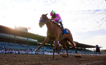 Always A Princess - Santa Anita13.02.11