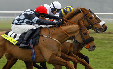 Recession Proof centre wins from Bothy and Notus De La Tour Totesport Trophy Hurdle Newbury 18.02.2011