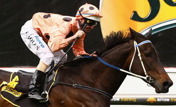 Black Caviar wins Race Five the Schweppes Stakes during Cox Plate Day at Moonee Valley Racecourse on October 23, 2010 in Melbourne, Australia