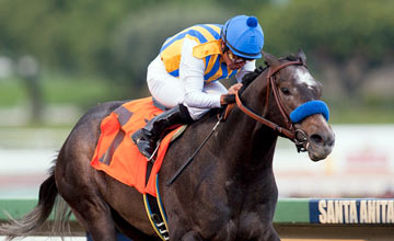 THE FACTOR (Martin Garcia) winning at Santa Anita