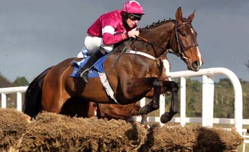 STONEMASTER WINS THEBALLSBRIDGE HURDLE LEOPARDSTOWN 27.02.2011
