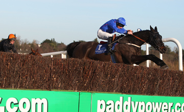 Rare Bob winning the Tote Pick Six Every Sunday Leopardstown Handicap Chase Leopardstown 09.01.2011