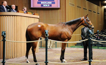 Keeneland January Sale 2011 January 10th, 2011 HIP #: 125 $625k