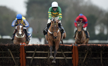 Binocular (Tony McCoy) jumps the final flight and wins the Christmas Hurdle Kempton 15.01.2011