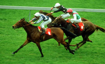 Miesque winning the 1000 Guineas at Newmarket
