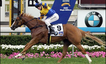 Karuta Queen wins Magic Millions