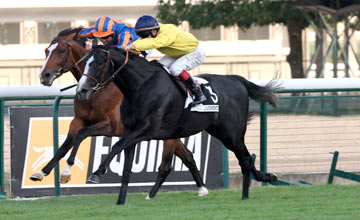 Meandre - Longchamp - 14.07.2011
