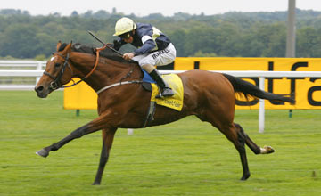 Nathaniel - Ascot - 23.07.2011