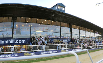 Wimbledon Greyhound Track