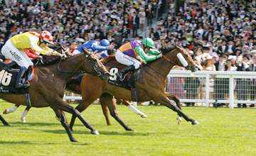 Prohibit - Royal Ascot - 14.05.2011