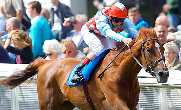 Red Cadeaux - The Curragh 25.06.2011