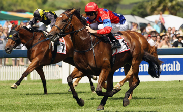 Jimmy Choux (Jonathan Riddell) wins the Telecom New Zealand Derby during Derby Day at Ellerslie Racecourse 05.03.2011