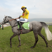 AlFerof (Ruby Walsh) after winning the Supreme Novices hurdle Cheltenham festival 15.03.2011
