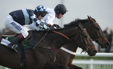 Captain Chris passes Finian's Rainbow as they approach the final fence in the Arkle Cheltenham festival 15.03.2011