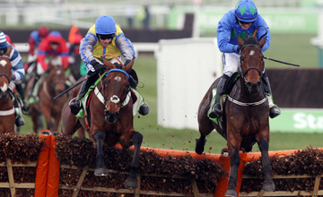 Hurricane Fly and Ruby Walsh jump the last flight on there way to winning the Champion Hurdle from Peddler's Cross Cheltenham Festival 15.03.2011