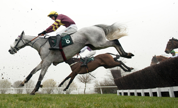 Chicago Grey jumps the 3rd last fence as they win the 4m amateur riders novices chase Cheltenham 16.03.2011