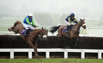 Bostons Angel (right) jumps the 2nd last fence with Jessies Dream RSA Chase Cheltenham Festival 16.03.2011