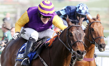 Noble Prince Beats Wishfull Thinking at Cheltenham 17.03.2011