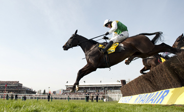 Albertas Run jumps the last to win the Ryanair Chase Cheltenham 17.03.2011