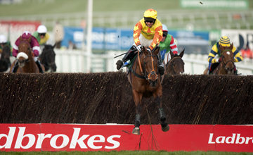 Holmwood Legend (Keiran Burke) jumps the last fence and wins the 2m 5f handicap chase Cheltenham Festival 17.03.2011