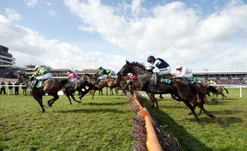 Final Approach County Hurdle - Cheltenham 18.03.11