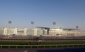 Meydan Generic