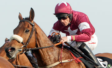 Quito De La Roque - Punchestown 3.5.11