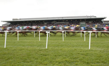 Punchestown 05.2011
