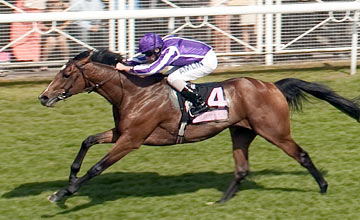 St Nicholas Abbey - 2.55 Chester - 6.5.11