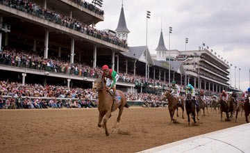 Animal Kingdom - Kentucky Derby 2011