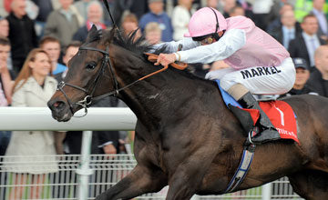 Duncan With W Buick Wins Yorkshire Cup At York 13 5 11