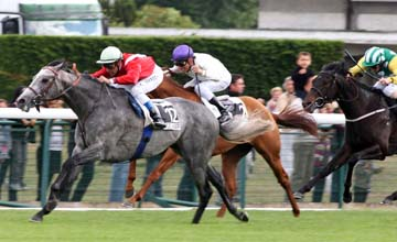 Tin Horse - Longchamp - 15.05.2011