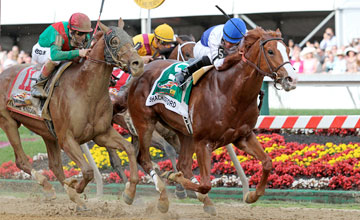 Shackleford - Preakness Stakes (Gr. I) at Pimlico Raceocourse 5/21/11