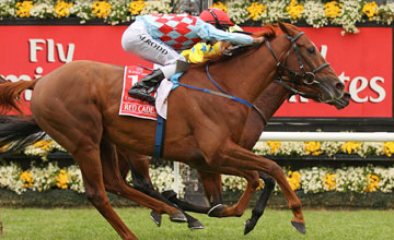 Dunaden (far side) beats Red Cadeaux - Melbourne Cup - Flemington - 01.11.2011