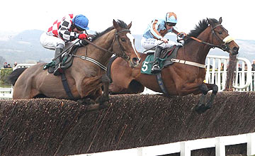 The Giant Bolster (near) - Vino Griego (far) - Cheltenham