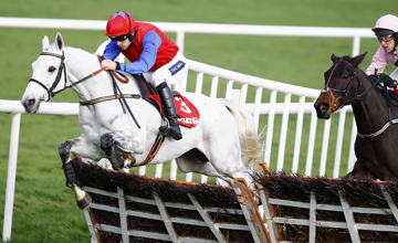 Thousand Stars - Punchestown - 20/11/2011