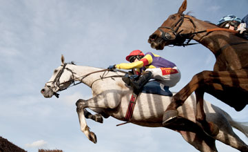 Grands Crus Newbury 24/11/2011