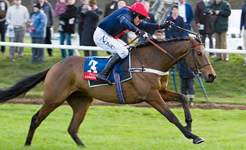 Bobs Worth - Newbury 25.11.2011