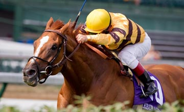 Wise Dan (Jon Court up) wins the Firecracker S. (G2) at Churchill 7.04.2011
