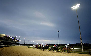 Wolverhampton - floodlit racing