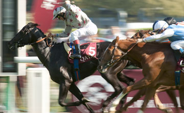Frankie Dettori and Dabirsim win the Prix Jean-Luc Lagardere