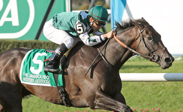 Western Aristocrat (Mr. Greeley) and jockey Corey Nakatani win the Gr I Jamaica at Belmont Park 10/8/11