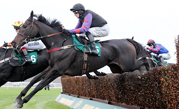 Champion Court - Aintree 23.10.2011