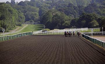 Lingfield racecourse (Polytrack) 02.06.2011