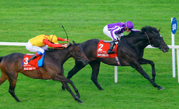 So You Think - Leopardstown