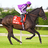 So You Think - Irish Champion Stakes - Sept 2011