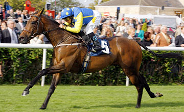 Invincible Hero - Doncaster 07.09.2011