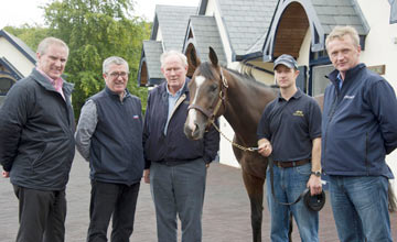 Pour Moi Arrives At Coolmore