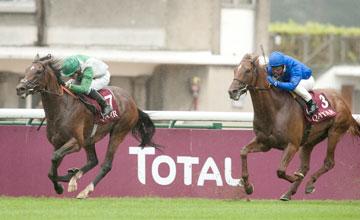Excelebration - Longchamp 11/09/2011