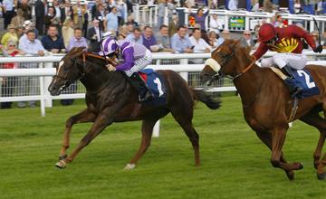 Cavaleiro - Newbury - 16/09/2011